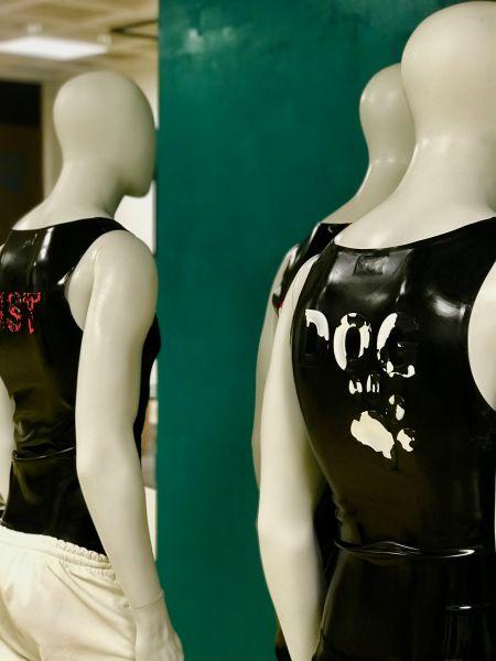 Schriftzug im Bleachers-Stil DOG mit Pfote